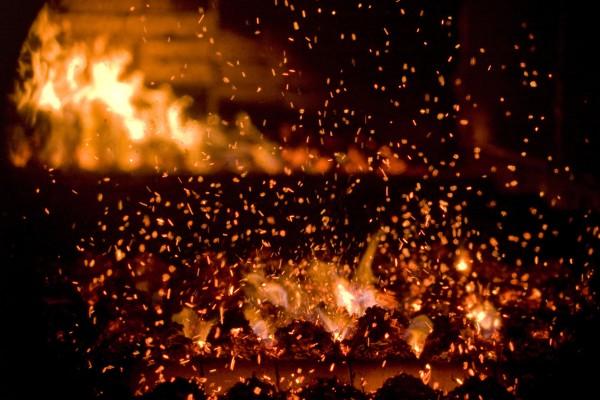 Mit Biomasse erzeugte Energie entsteht C02 Neutral